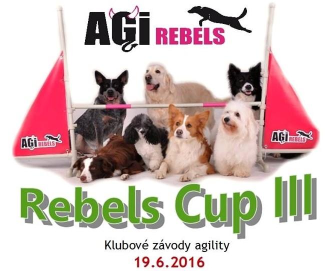 rebels-cup-III-1-e1464984314386